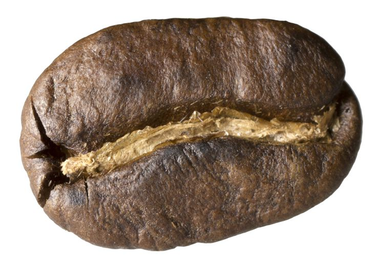 Picture Of Coffee Bean At Close