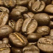 Picture Of Coffee Beans At Close